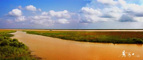 山东黄河三角洲国家级自然保护区 - 莫家楼(大漠孤烟) - 莫家楼人的家园
